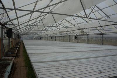 Fläktluftvärme till växthus